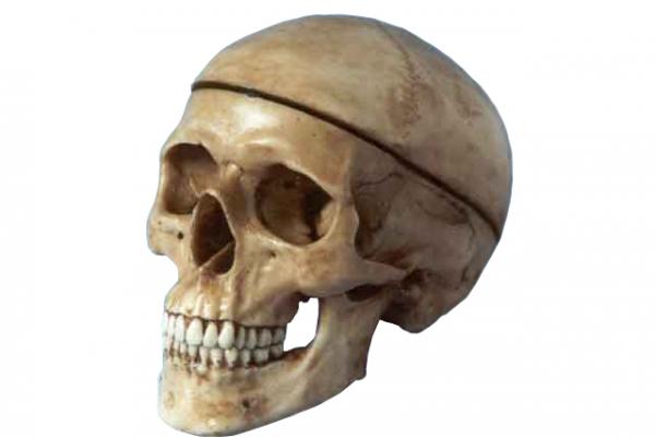 implantodontia,-periodontia-e-prótesesBBF912D7-7EAF-8829-34C7-4F5AD4087FF0.png