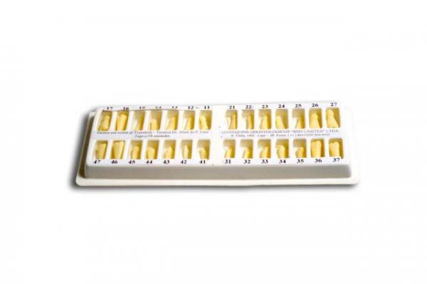 dentes_para_typo-10568A56B4-4CDC-3422-5318-FD12BA76563A.png